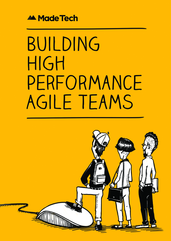 Building High Performance Agile Teams